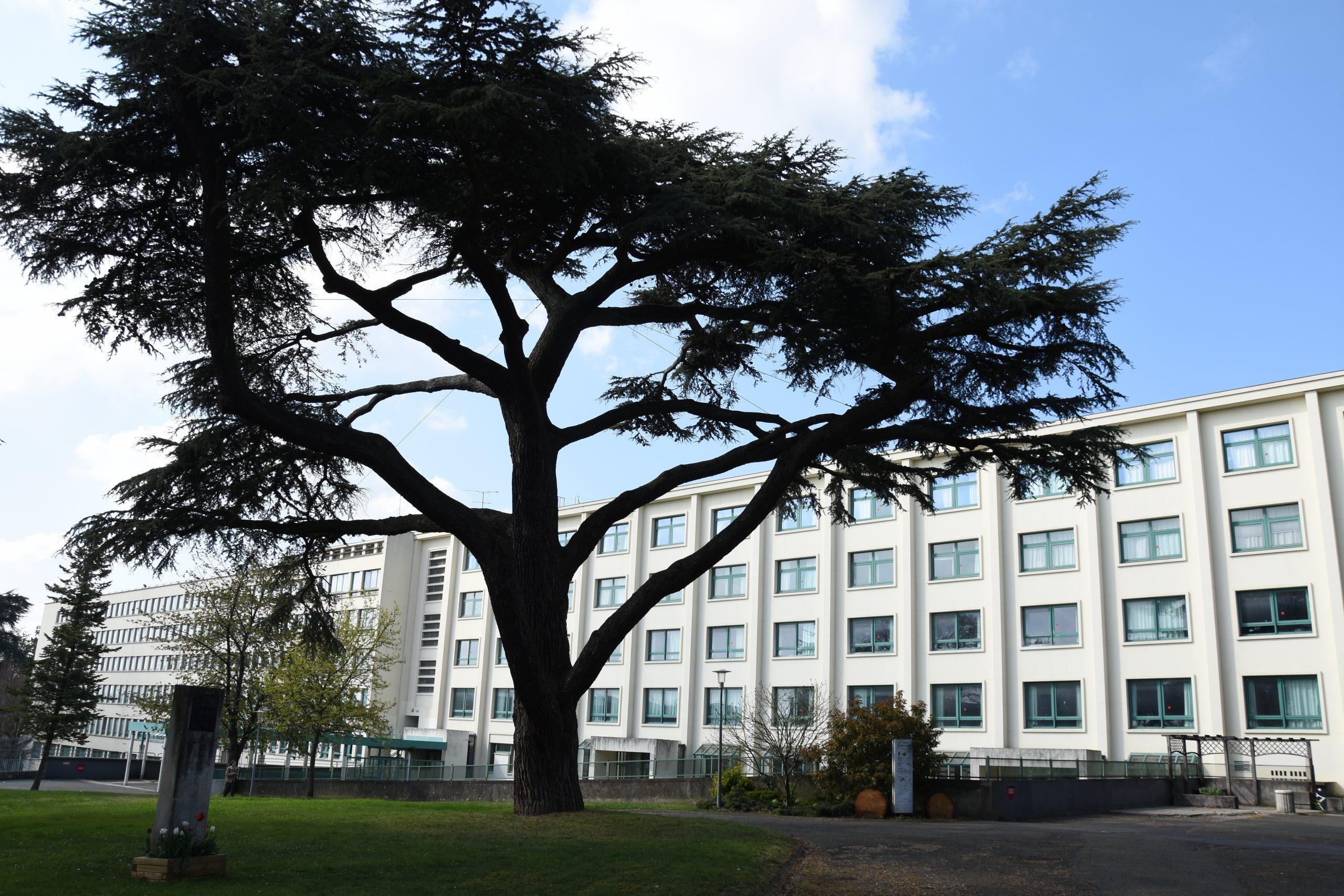 Lycée Jeanne d'Albret